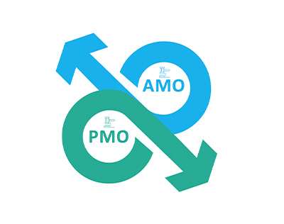 Adapt PMO to embrace rapid change in business models today